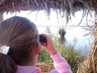 Mirador ornitológico